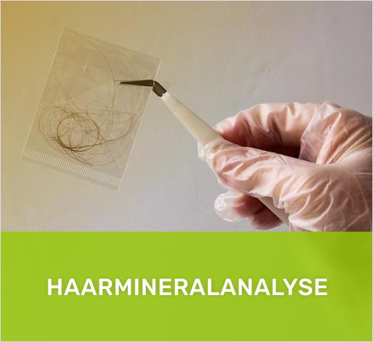 haarmineralanalyse muenchen heilpraktiker 1 - Diagnostik