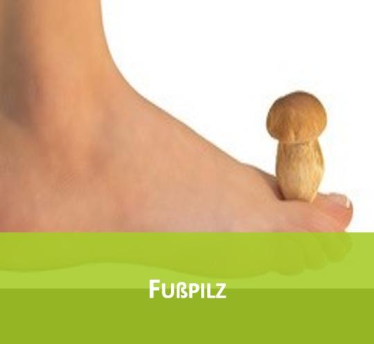 Fußpilz2 - Spezialisierung